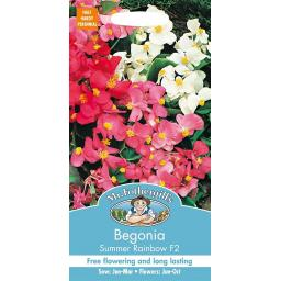 Begonia Summer Rainbow