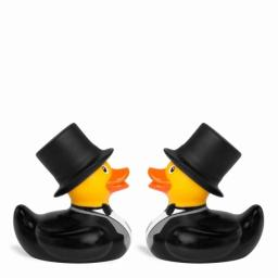 Duck Deluxe Mini Groom & Groom Set