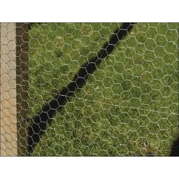 Galvanised Wire Netting 900mm x 25mm x 5m