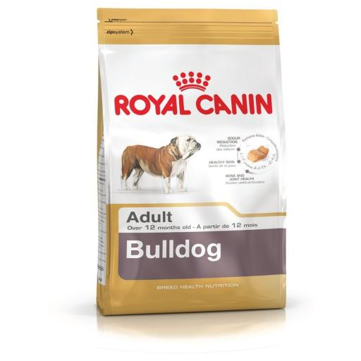 Canin Dog Bulldog Adult