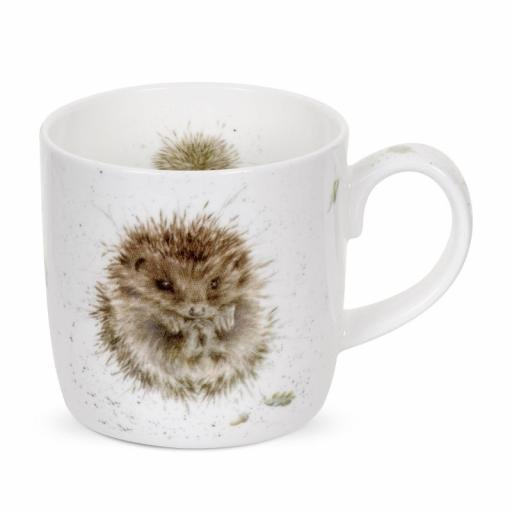 Wrendale Mug Hedgehog Awakening