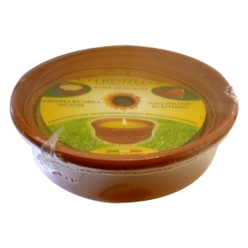 Prices Citronella In Terracotta Pot